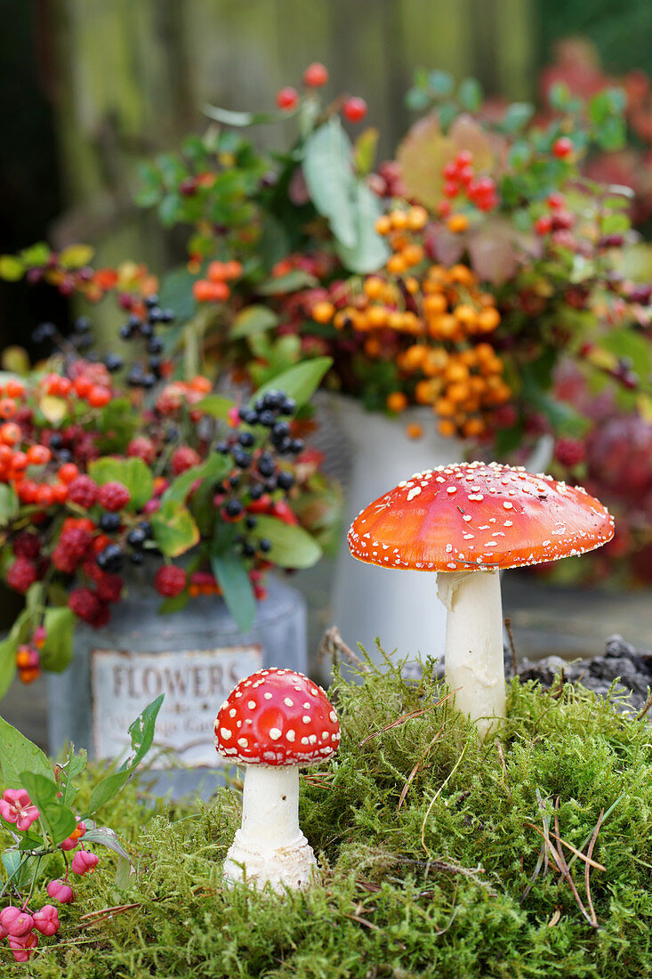 Fly agaric mushrooms with autumn bouquets in background