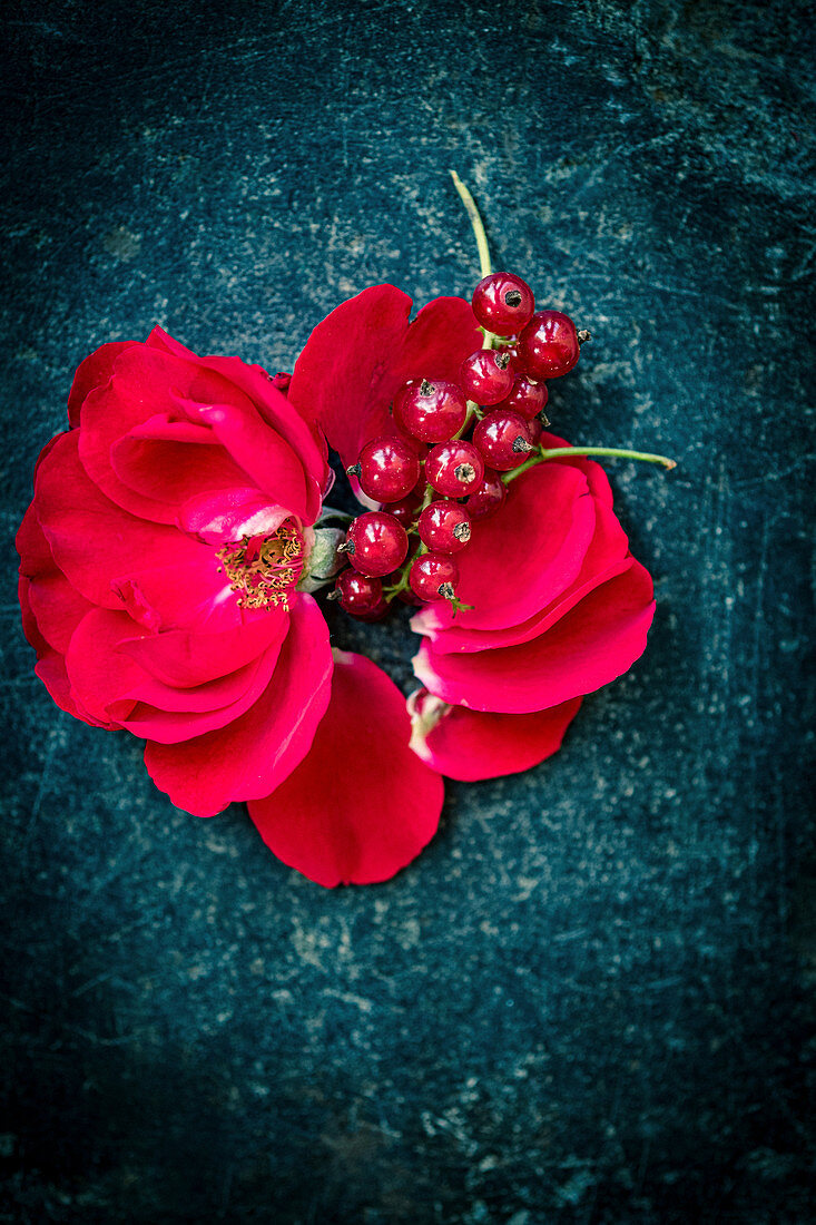 Roses and redcurrants