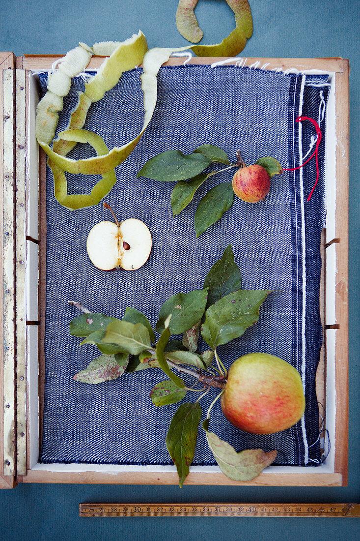 Apples, apple slices and apple peel on blue fabric