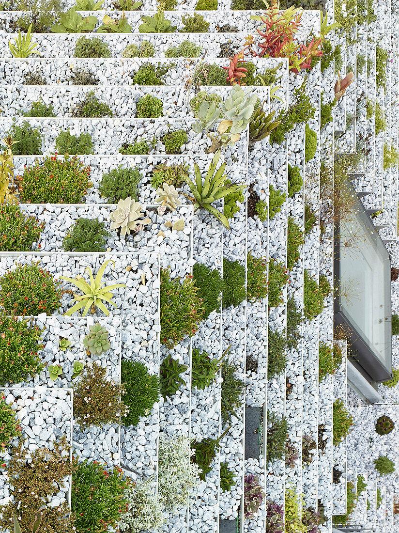 Detail eines terrassierten Dachgartens