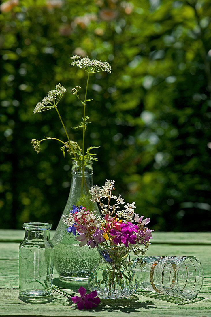 Colourful summer posy and flowers of greater burnet-saxifrage in bottle