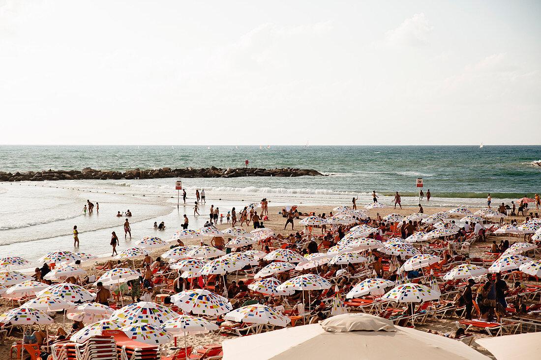 Sonnenschirme am Strand von Tel Aviv (Israel)
