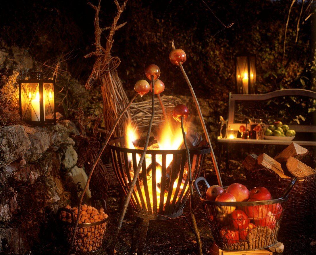 Baking apples on sticks over bonfire