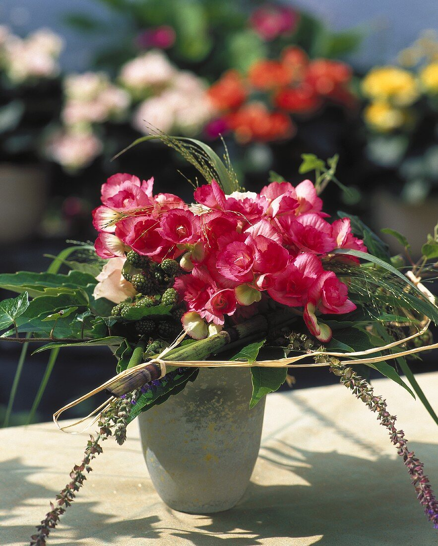 Begonias decorated with raffia, bamboo cane and grasses