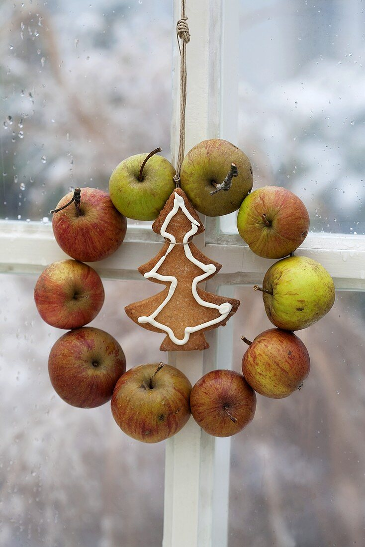 An apple wreath and a Christmas biscuit hanging in the window