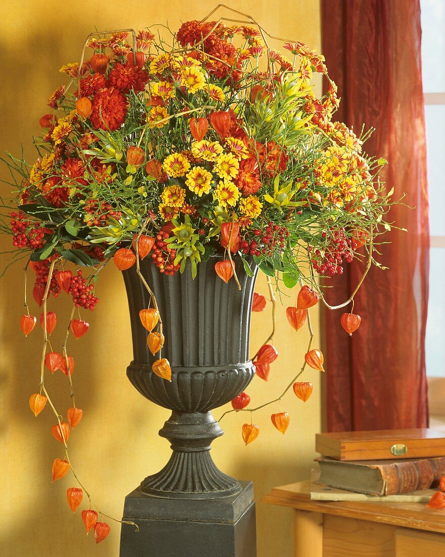 Autumn Arrangement Of Chrysanthemums Buy Image 272442 Living4media