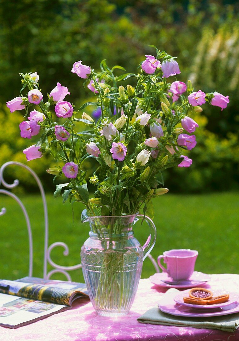 Pink Campanula on table in open air