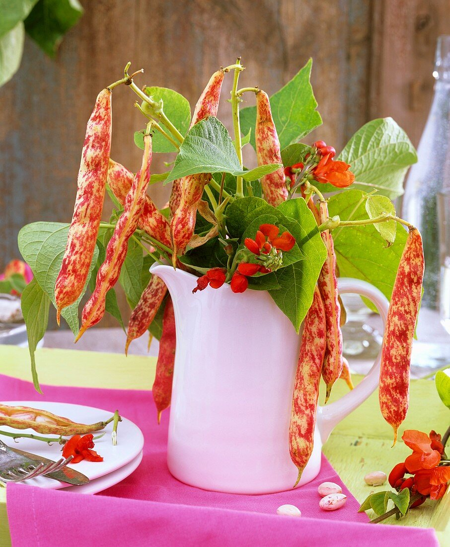 Beans, bean flowers and leaves in a jug