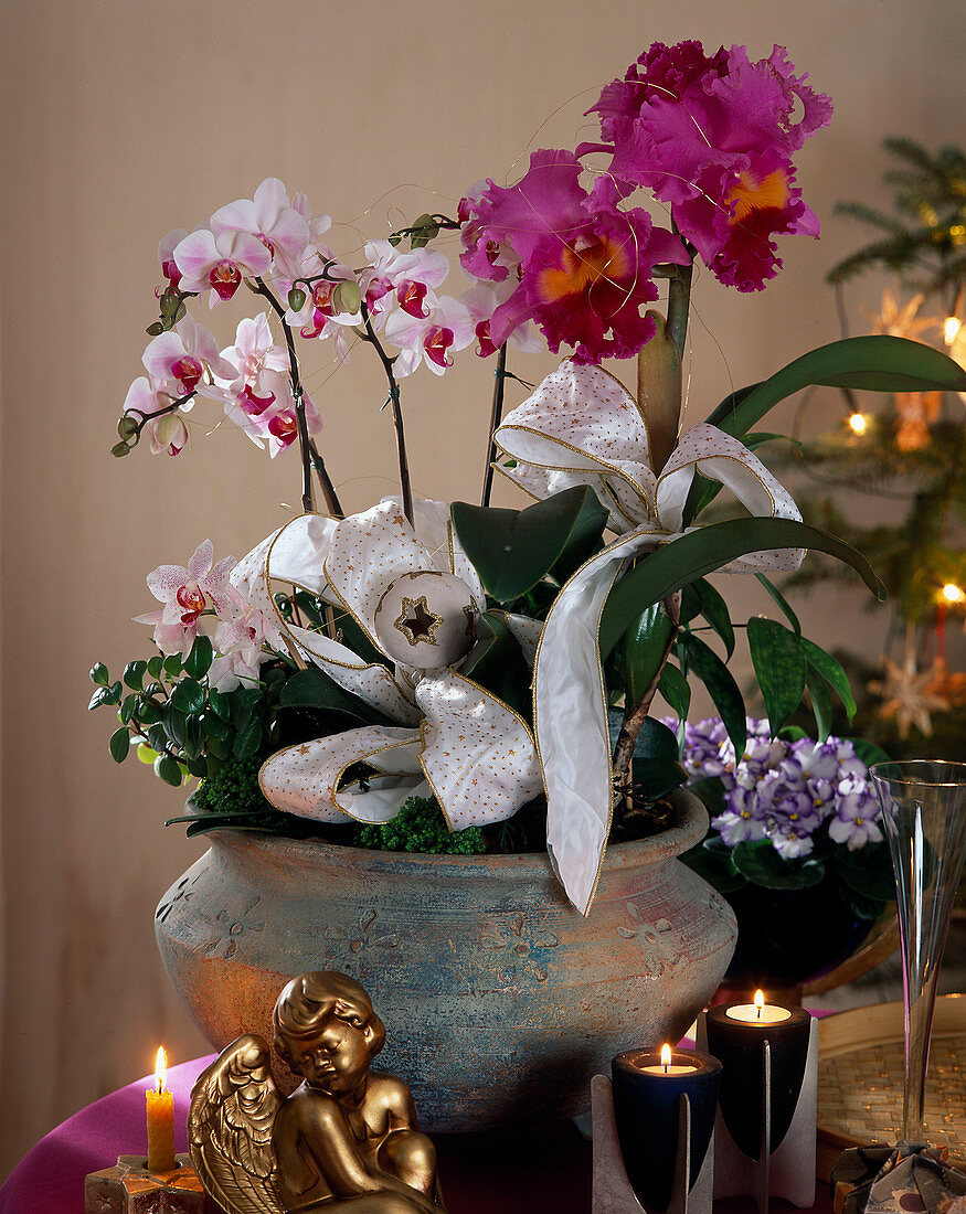Bowl of orchids