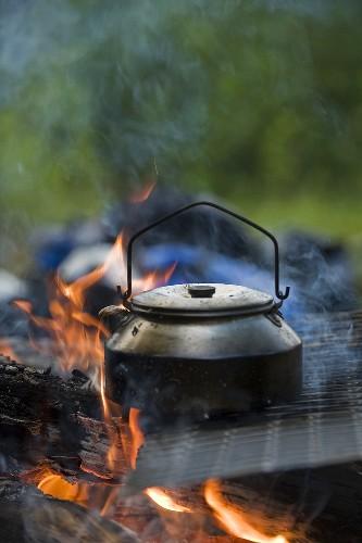 Tea kettle over a campfire