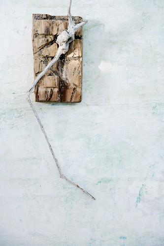 Arrangement of flotsam on white background