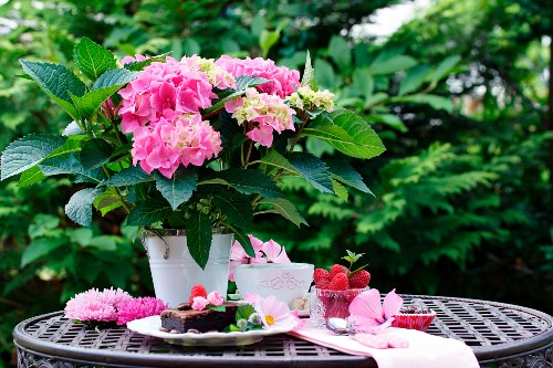 Pink hydrangeas in a pot with desserts on a metal table in the garden