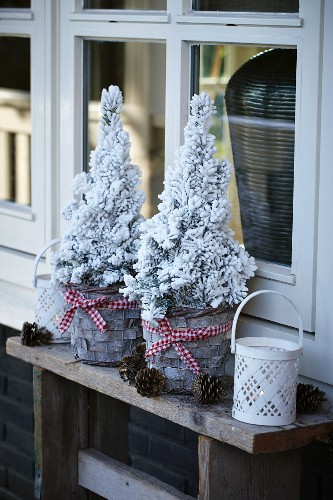 Christmas arrangement in front of terrace windows: miniature conifers, lanterns and pine cones