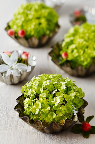 Small cake moulds used as vases for viburnum, glory-of-the-snow & St. John's wort berries