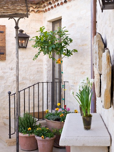Stone patio with garden elements