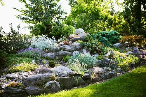 Planted rockery