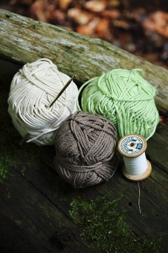 Balls of wool of various colours on tree trunk