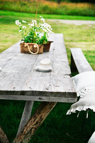 Potted flowering plant on weathered wooden table outdoors