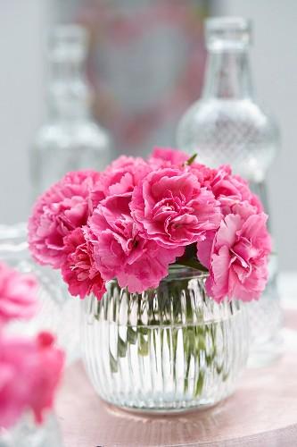 Dianthus in glass vase