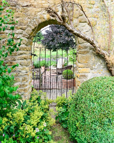 Box ball next to arched doorway in stone wall