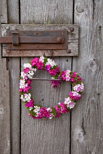 Heart-shaped wreath of sweet William hanging from rustic barn door