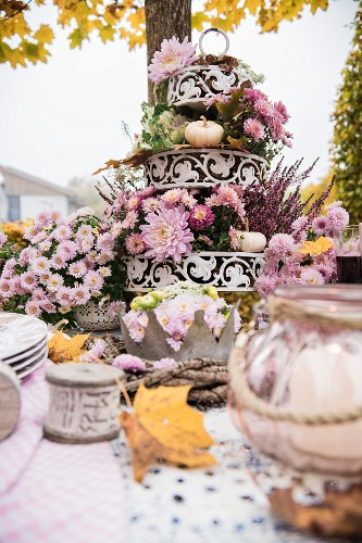 Autumnal arrangement of flowers on cake stand on set table