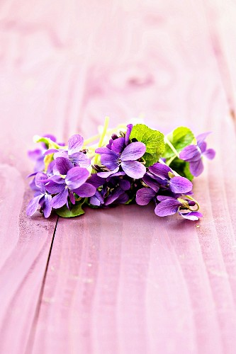 Sweet violets on pink wooden surface
