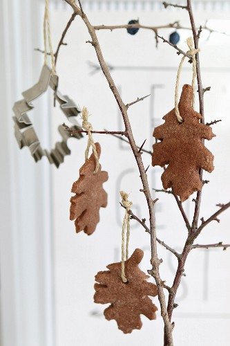 Brown, leaf-shaped shortbread biscuits hanging from branch as autumn decorations
