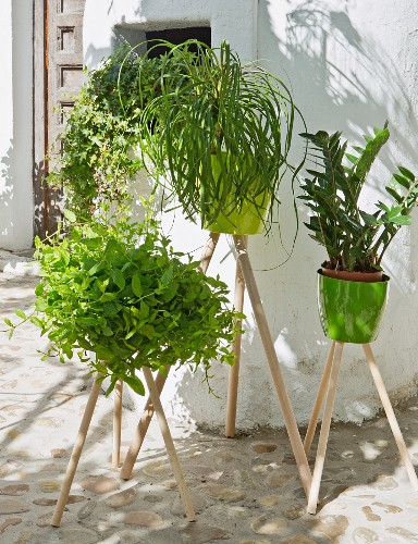 Plant stands hand-made from pots and wooden posts