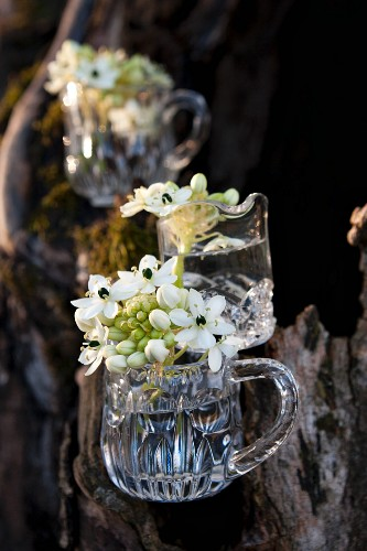 Glass jugs decorated with star of Bethlehem