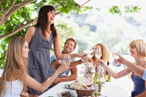 Friends toasting with wine in a garden
