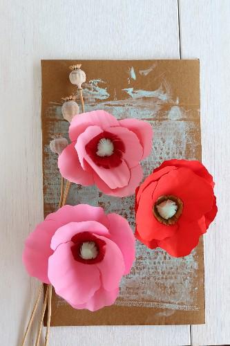Paper poppies stuck on cardboard