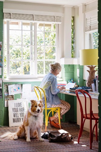 Woman on laptop in bright home office with dog