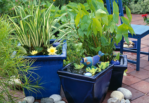 Blue glazed pots with fish as a water feature