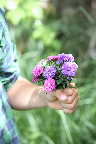Boy holding posy of asters