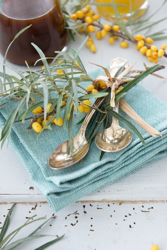 Silver spoons and sprigs of sea buckthorn on napkin