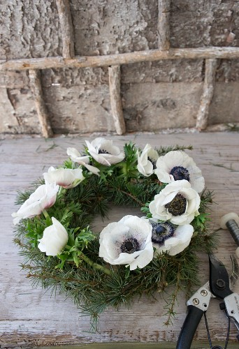 Wreath of larch twigs and white anemones
