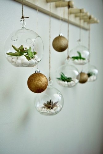 Christmas tree baubles and succulents in miniature terrariums hung from coat pegs