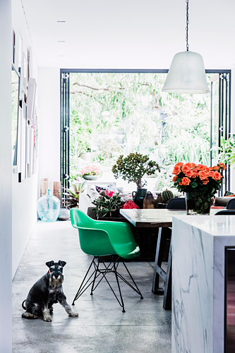 View of green shell chair at dining table in open living area