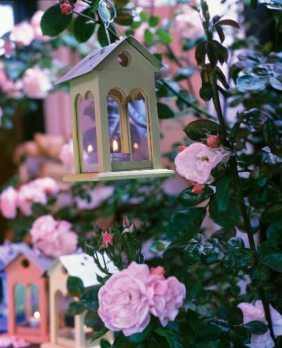 Tealight holders shaped like birdhouses amongst flowering roses