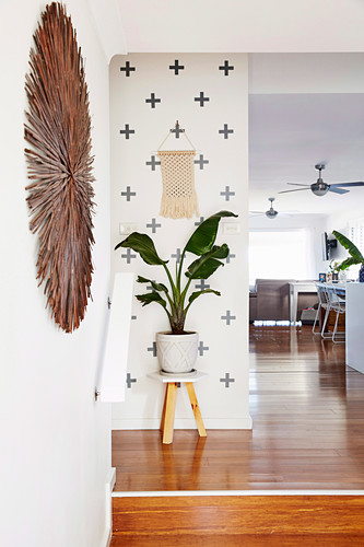 Houseplant on stool in the hallway with wall decoration