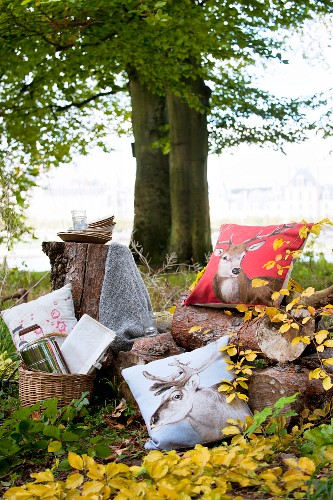 Autumn picnic in woods with animal motifs on cushions