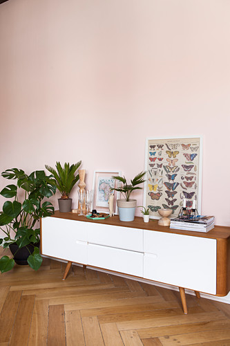 Low sideboard next to houseplants in period apartment