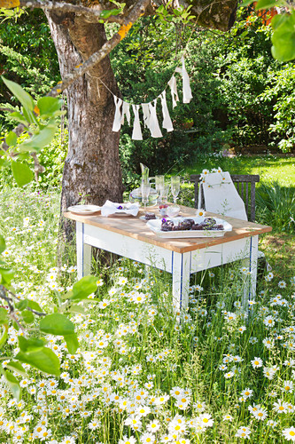 Set table under tree in flowering meadow in summery garden