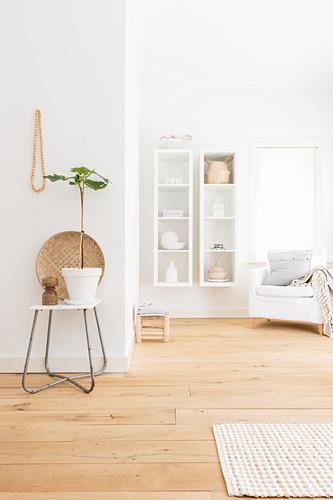 Stuhl mit Zimmerpflanze, im Hintergrund weiße Wandregale neben Sessel