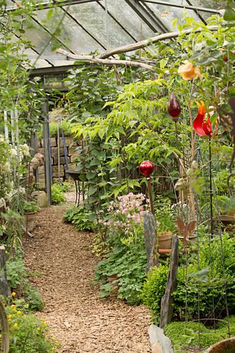 Gemulchter Weg zwischen Pflanzen und dekorativen Gartensteckern in alter Gärtnerei