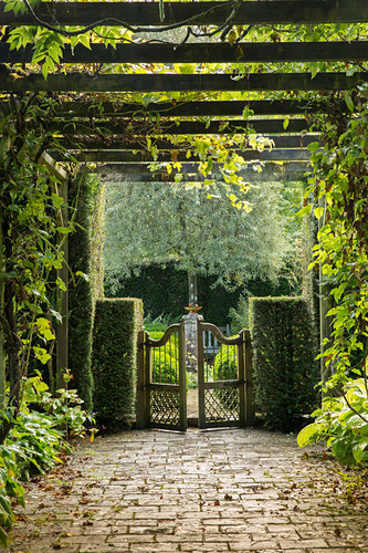 Path covered by pergola leading to garden gate (Les Jardin de Castillon, France)
