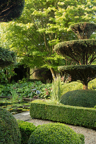 Topiary garden with ponds (Les Jardin de Castillon, France)