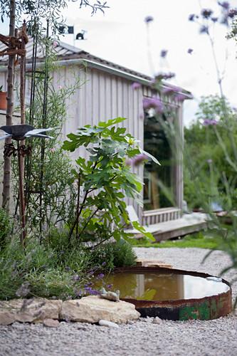 Teich mit rostiger Metallbegrenzung im Garten vor einem Holzhäuschen