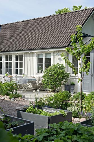 Hochbeete im sommerlichen Garten eines weißen Schwedenhauses